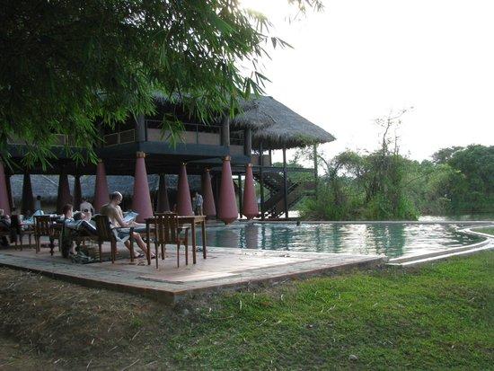 Jetwing Vil Uyana: Zwembad