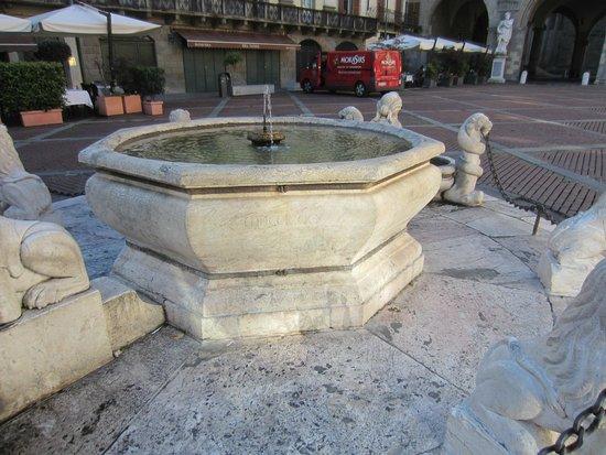 Fontana Contarini: Fontana del Contarini