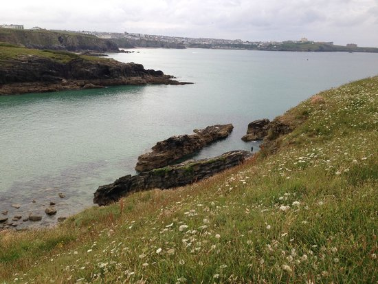 The Cove Guesthouse: Newquay from Trevelgue Head