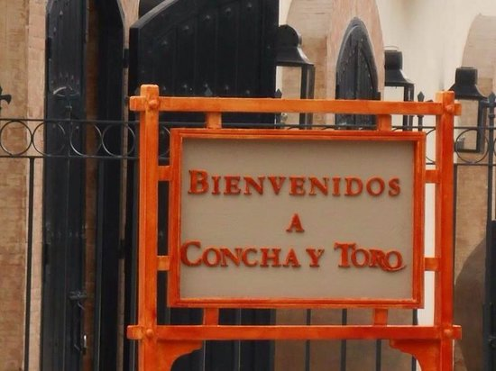 Concha y Toro: Experiência ímpar. Local maravilhoso!