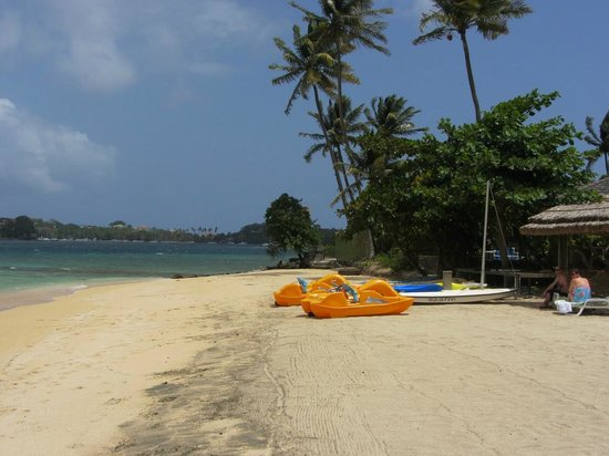 Young Island Resort: Beach