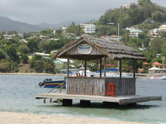 Young Island Resort: Coconuts Bar