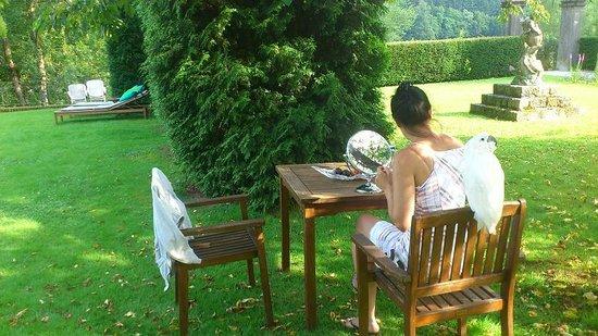 Chateau de Vignee : Parkambiente