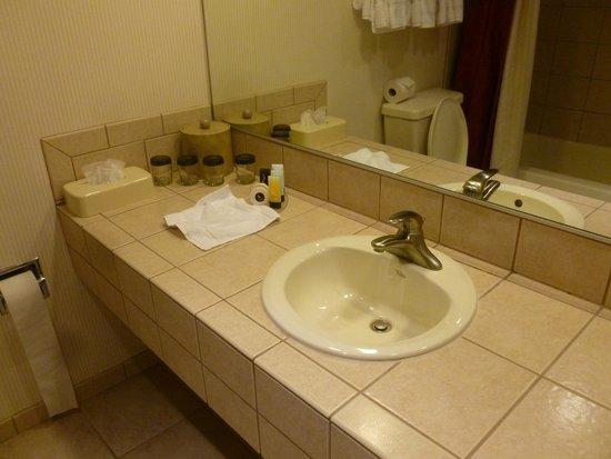 Eldorado Resort Casino : Plenty of space in the bathroom, but no toothbrushes were provided.