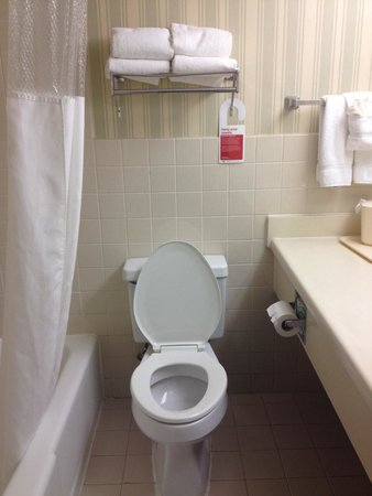 Days Inn & Suites Elyria: Bathroom