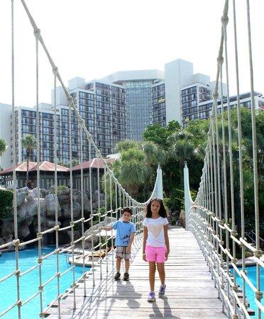 Hyatt Regency Grand Cypress: The bridge over the pool