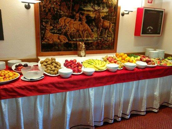 Wellness Hotel Fontana : Het ruime buffet