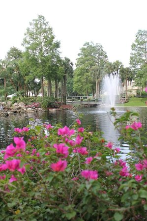 Hyatt Regency Grand Cypress: The beautiful Asian inspired gardens