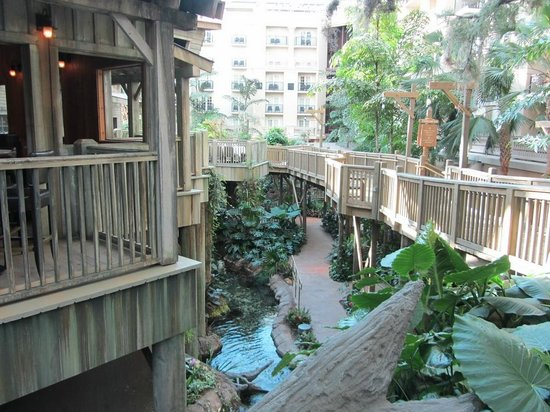 Old Hickory Steakhouse: Everglades walkway beneath the restaurant