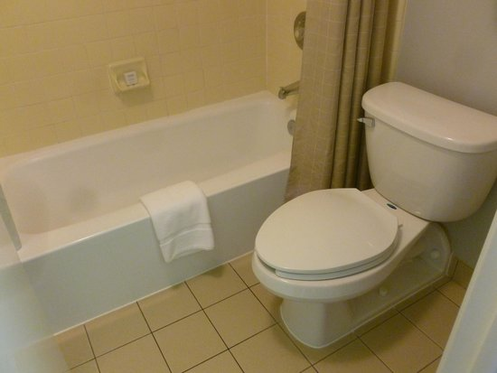 Avatar Hotel, a Joie de Vivre hotel: Bathtub was not tall enough and the sink is separated from the bathroom.