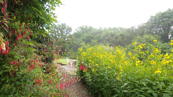 Broom House: Gardens in bloom