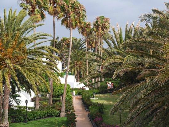 ClubHotel Riu Paraiso Lanzarote Resort: zadbany ogród