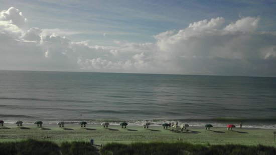 Tropical Seas Hotel: Ocean View
