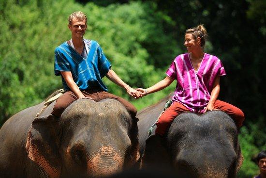 Patara Elephant Farm - Private Tours : A Nice Ride