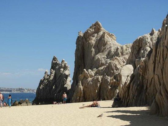 El Arco de Cabo San Lucas : Gorgeous views