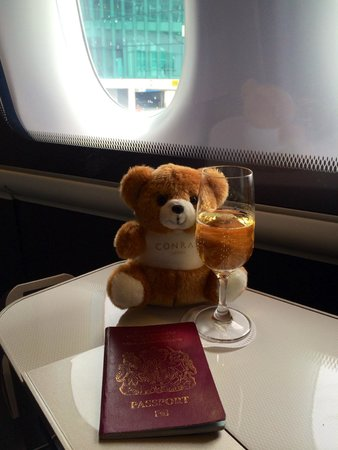 Conrad Seoul : Thanks again for the bear, he had a comfy seat on the way home.
