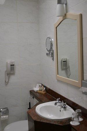 Buswells Hotel: bathroom