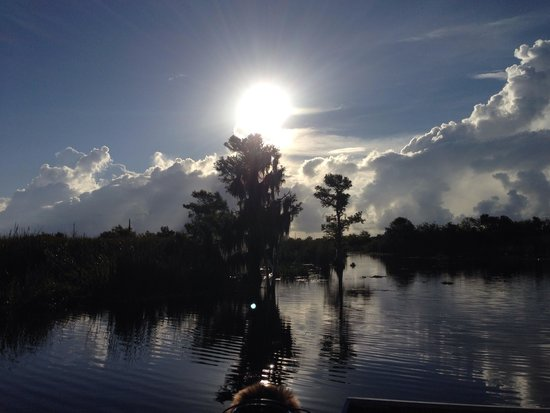 Florida Cracker Airboat Rides & Guide Service: Awesome!
