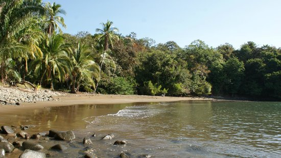 Hotel Boca Brava: Playa piedritas