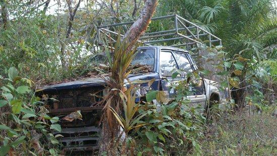 Hotel Boca Brava : Hay que mejorar este tipo de basura en unsa isla sin carreteras