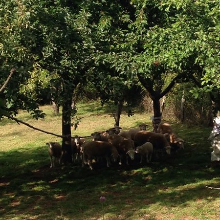 BENAXO - Casa de Turismo Rural: La campagna intorno