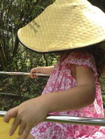Bali Safari & Marine Park: on top of the elephant ride