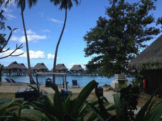 Sofitel Moorea Ia Ora Beach Resort : Dal Bungalow