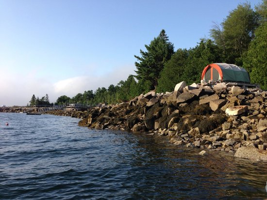 Somes Sound View Campground: Waterfront campsite