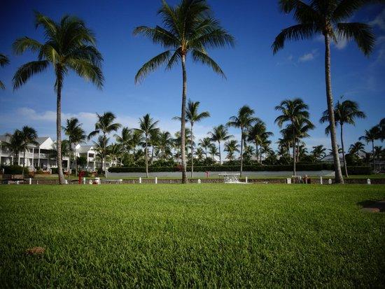 Indigo Reef Marina Homes Resort : looking out