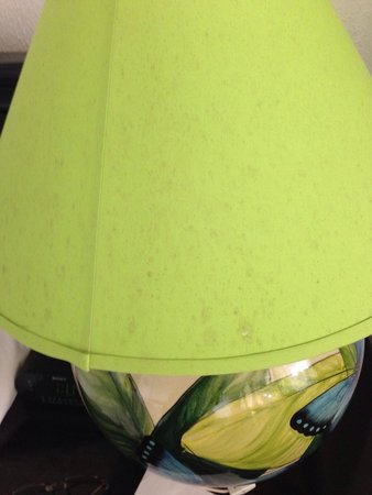 La Mansion Inn: Stained lampshade...gross!