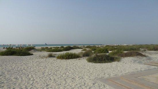 Park Hyatt Abu Dhabi Hotel & Villas: Strand