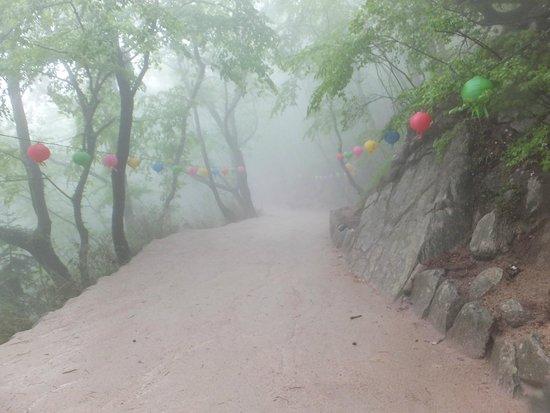 Seokguram: 山道