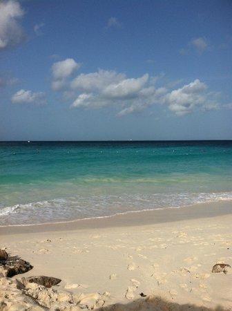 Eagle Beach at the Casa del Mar