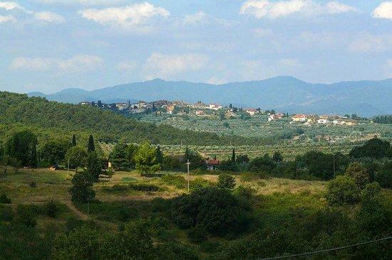 View from B&B Poggio del Drago