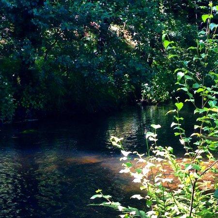 O Muino de Pena: Il rio
