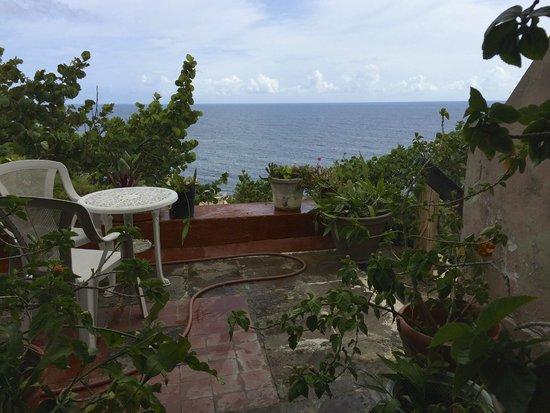The Gallery Inn: Rooftop view of ocean
