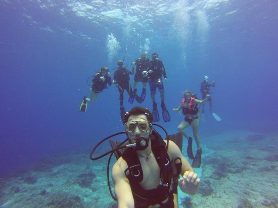 Sea Robin Cozumel: Underwater Family Shot!