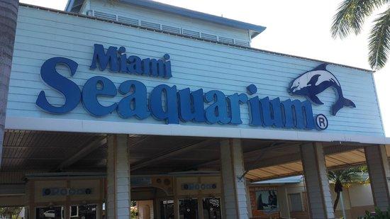 Miami Seaquarium: entrada