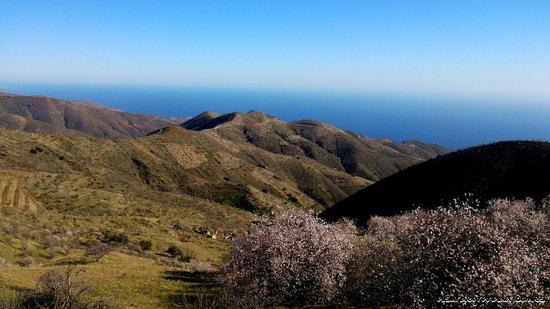 Sorvilan, Spain: Vista al Mar Mediterráneo con almendros en flor