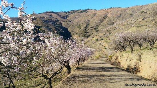 Sorvilan, Spain: Paisajes Naturales