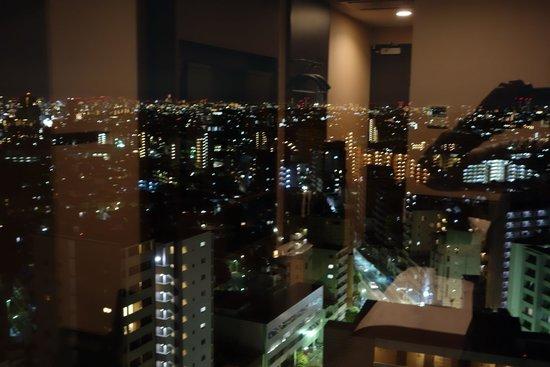 Hotel Viainn Tokyo Oimachi: 部屋からの眺め