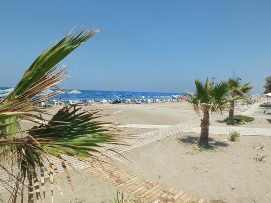 Minos Mare Hotel : beach view
