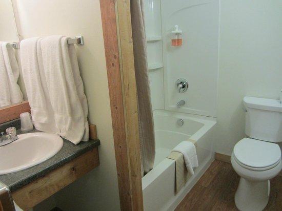 داون تاونر إن: Clean bathroom