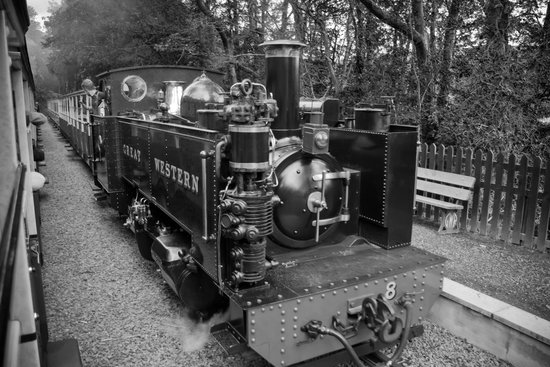 Vale of Rheidol Railway: Just passing