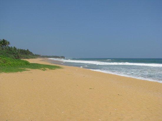 Aditya: strand