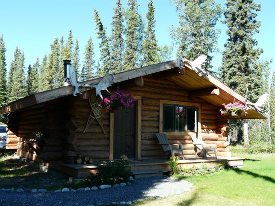 Cloudberry Cabin B&B: Fab self contained CloudBerry cabin