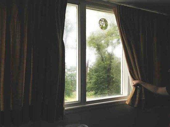 Almond House Lodge: Hole in window