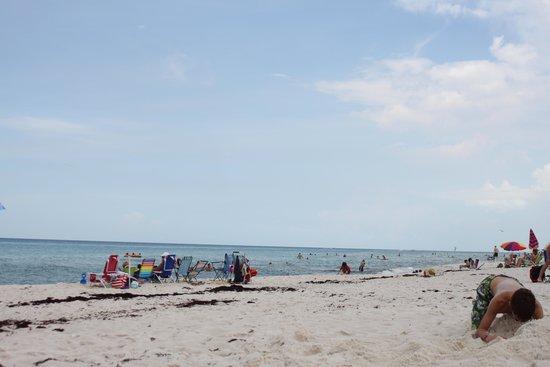 Sandpiper Beacon Beach Resort: The beach