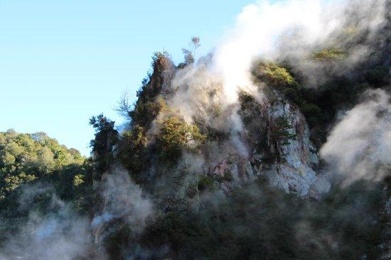 Waimangu Volcanic Valley : Volcanic Cone