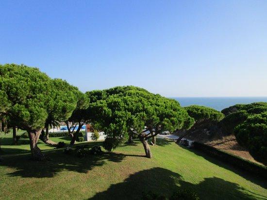 PARADOR DE MAZAGON: View from Room 77
